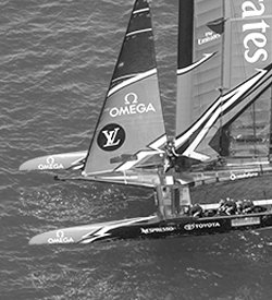 TeamNZ-Design-Team-250x275.jpg